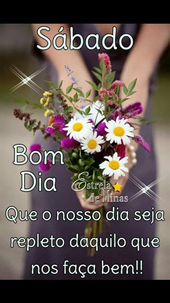 Pin De Eunice Barbarini Em Flor Do Campo Mensagens De Bom Dia