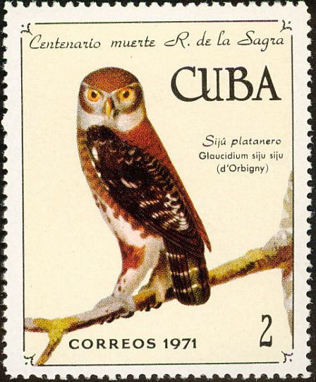 Cuban Pygmy Owl stamps - mainly images - gallery format