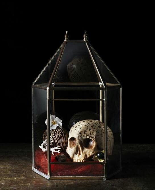 353 Best Behind Glass In Jars Halloween Images On