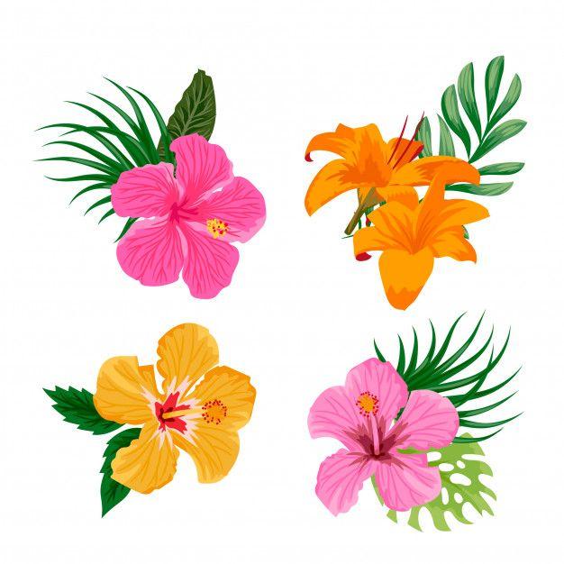 Skachivajte Tropicheskie Cvety Besplatno Flower Clipart Flower Drawing Tropical Flowers
