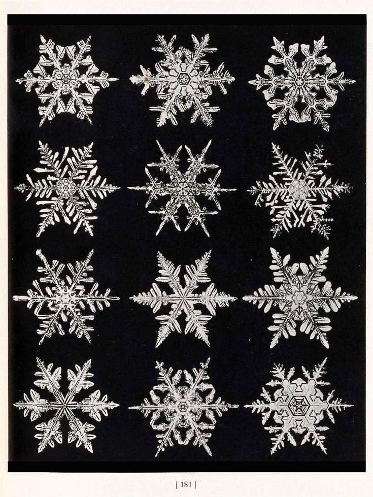 Design is fine. History is mine. — Wilson A. Bentley, Snowflake photos, 1931, New...