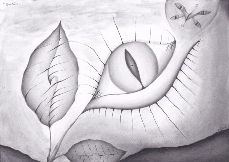 Awake by milyusia arts abstract graphite pencil drawing