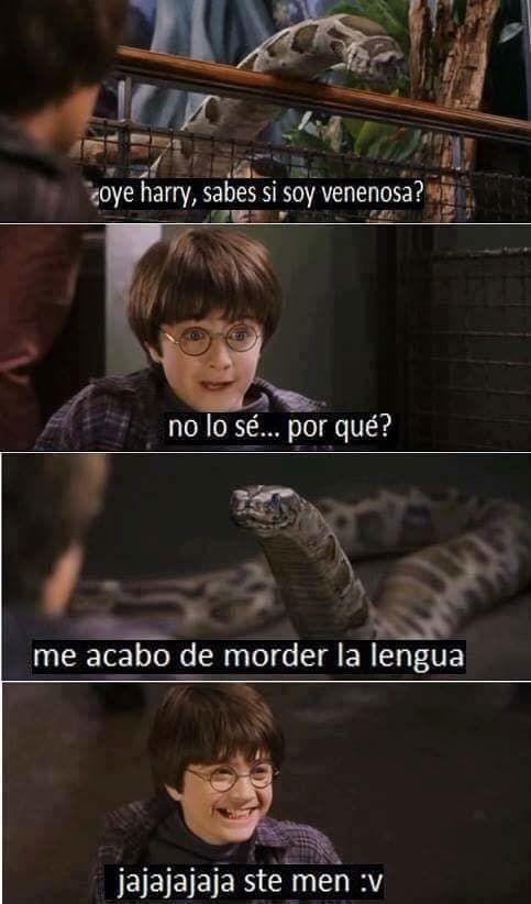 100 Memes von Harry …