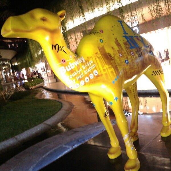 Camel #cigarette #promotion #beachwalk #bali