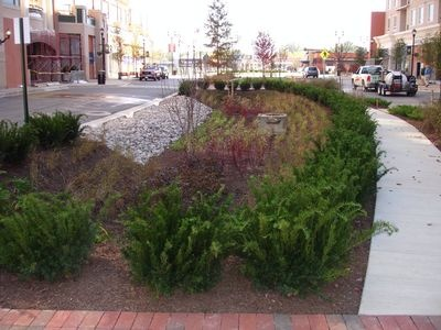 Good Bioretention Installations at Businesses and Institutions Rainscaping org Garden IdeasWonderland