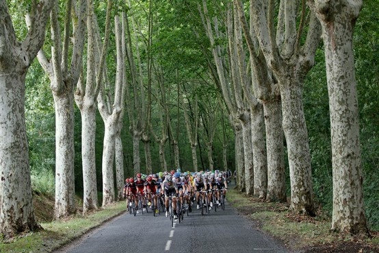 Tour de FranceHttp Www Pinterest Com Wocycl, France Tours, Pin Boards, 1987 Tours, Cycling, 2014Daili Pings, Le Tours, 2012 Tours, Awesome Stuff