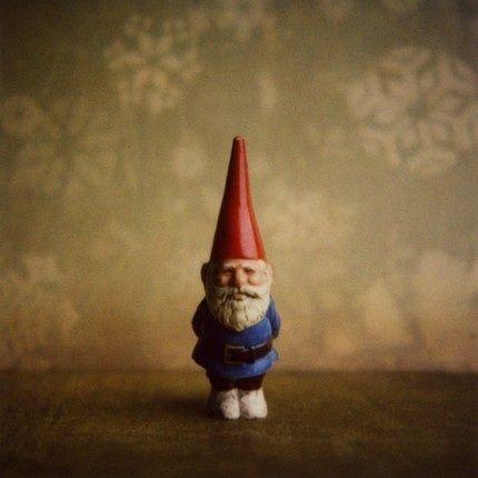 Imagem de gnome and amelie