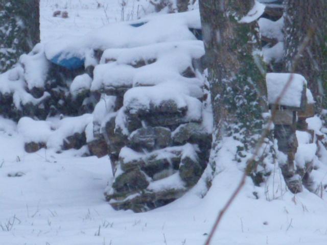 tas de bois neige
