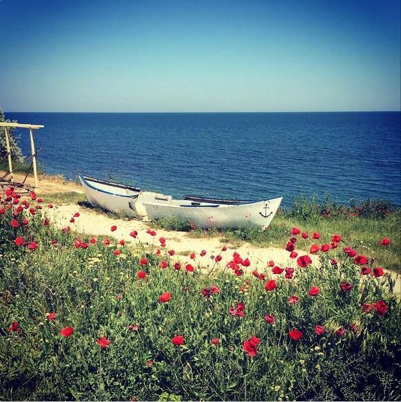 Silence of the sea.