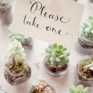Favors for Growing