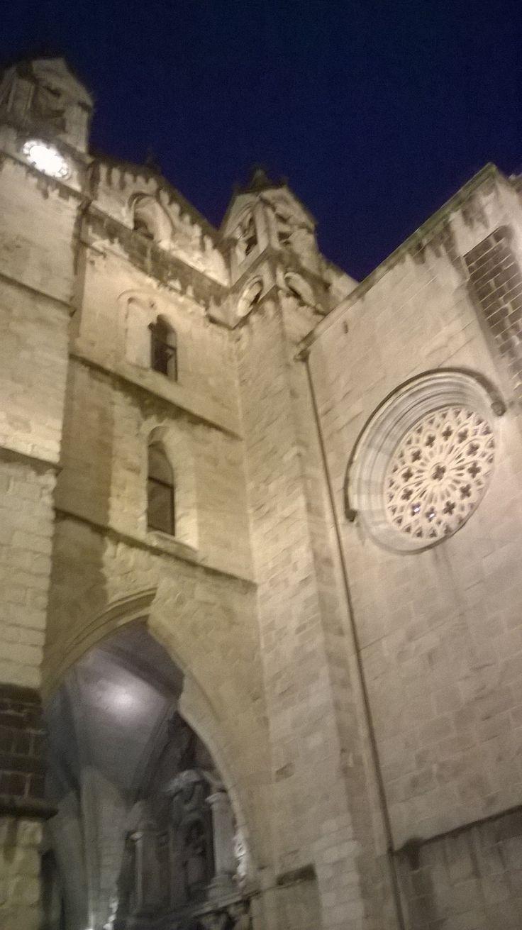 San Vicente - San Sebastian: Gotico - Roseton