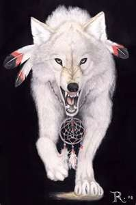 "Wolf Totem ~ The Navajo word for wolf, ""mai-coh,"" also means witch."