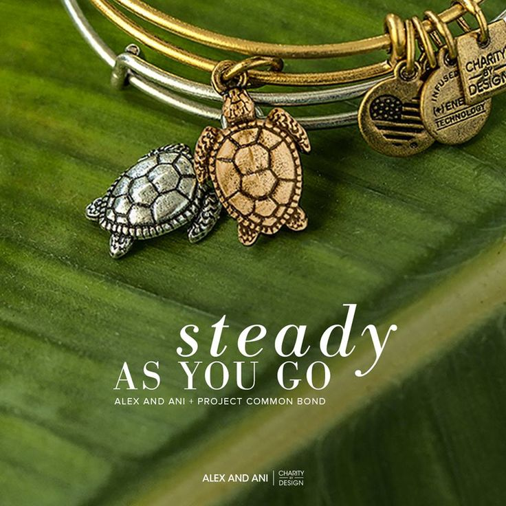 ALEX AND ANI CHARITY BY DESIGN Sea Turtle Charm Bangle | ALEX AND ANI CHARITY BY DESIGN and Project Common Bond | Protection • Longevity • Persistence | An important and sacred symbol in the mythologies of many indigenous cultures, the Sea Turtle represents continuation of life. They are known to live long lives, sometimes against incredible odds. Carry this turtle for strength and protection during life's trying moments.
