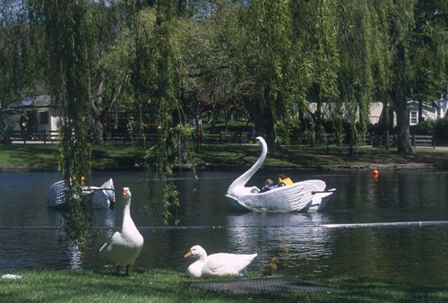 Toronto's Top 10 : Toronto Islands - Centreville Amusement Park    This small amusement park on Centre Island has more than 30 rides, including swan boats and a colorful 1890s carousel.