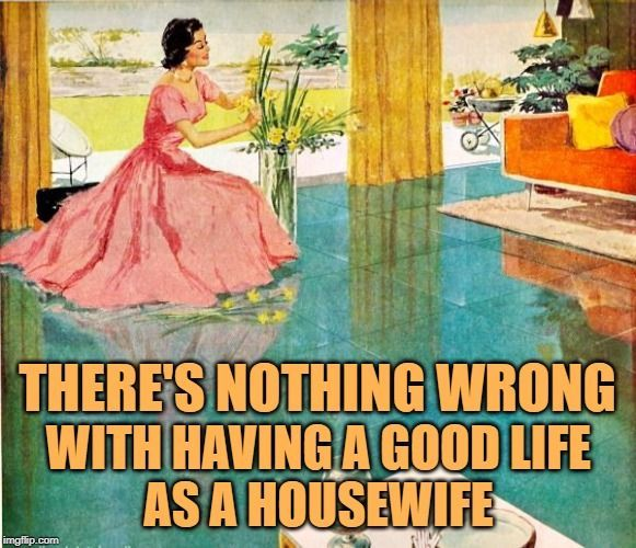 1950 S Housewife Morning Routine Retro Housewife Goes Green Housewife Retro Housewife Housewife Humor