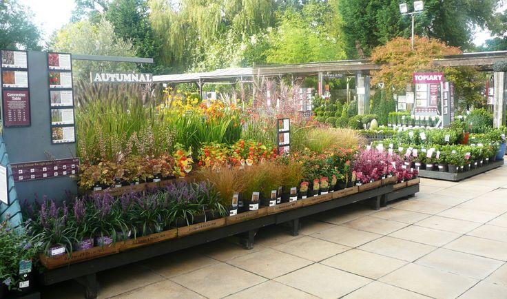 Squires Garden Centre, Twickenham