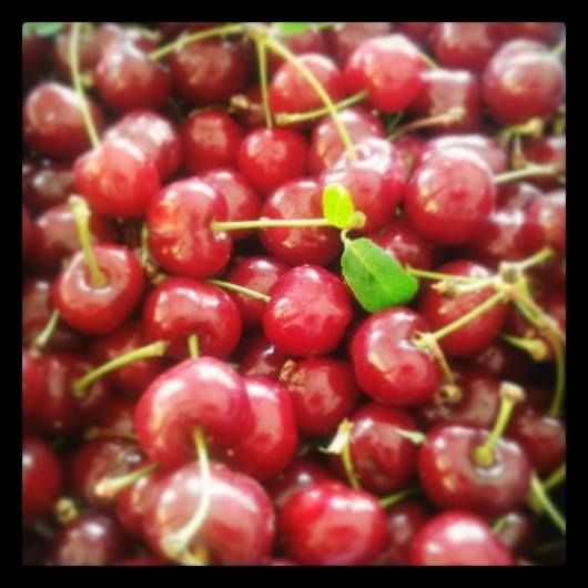 Delicious Sour Cherry - Ínycsiklandozó Meggy