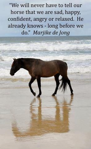 """""""We will never have to tell our horse that we are sad, happy, confident, angry or relaxed.  He already knows - long before we do."""" Marjike de Jong"""