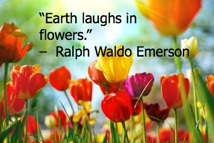 10 Quotes About Nature for Earth Day