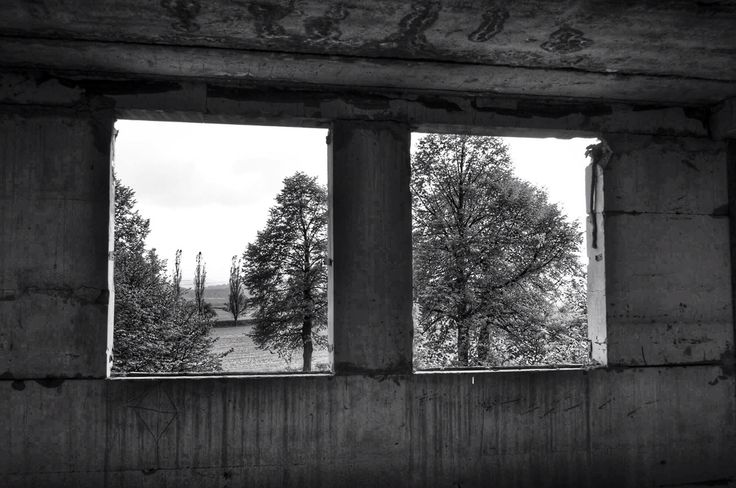 Trough the window  #abandoned#look#view#urbex