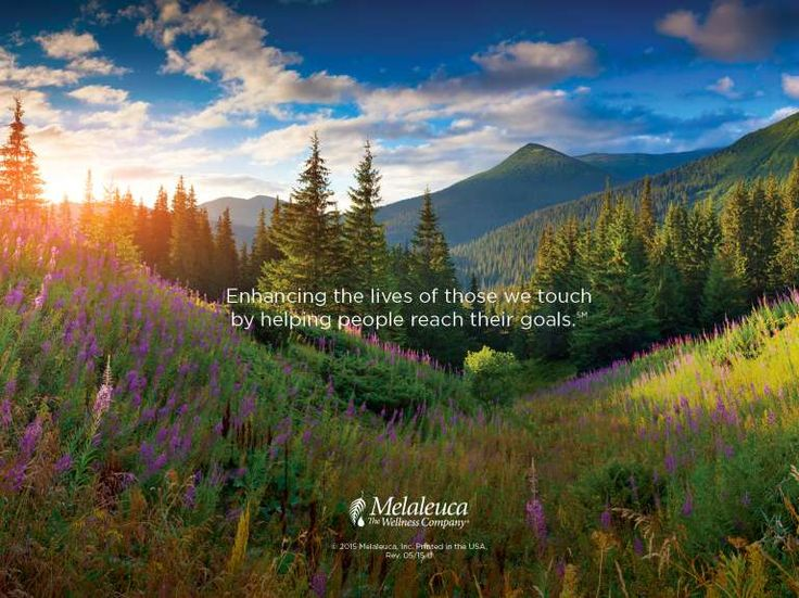 Life changing overview i love my job melaleuca in 2018