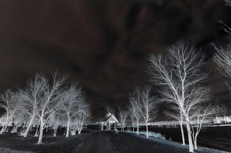 infrared kilcona park