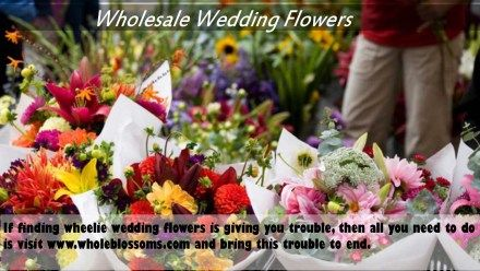 If finding wheelie wedding flowers is giving you trouble, then all you need to do is visit http://www.wholeblossoms.com/ and bring this trouble to end.