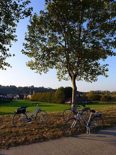 Entre Liège et Maastricht