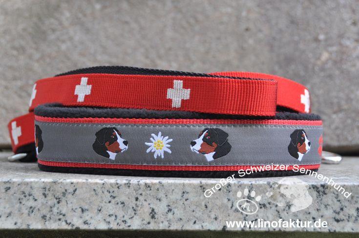 Halsband Großer Schweizer Sennenhund mit Schweizerleine dazu