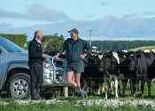 New Zealand is unique in that it exports 95 per cent of the 19 million tonnes of milk produced by New Zealand farmers, continuing a history of dairy exports spanning back to 1846.
