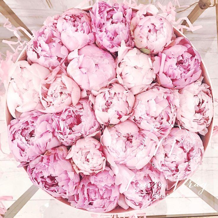 Peony, Peonies flowerbox viraglauravirag Instagram-bejegyzésének megtekintése • 2,850 kedvelés