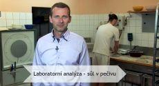 Laboratorní analýza - sůl v pečivu   Vím, co jím