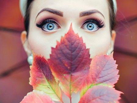Le suggestioni delle foglie che cadono in Italia e le case per un week end da sogno: regione che vai autunno che trovi