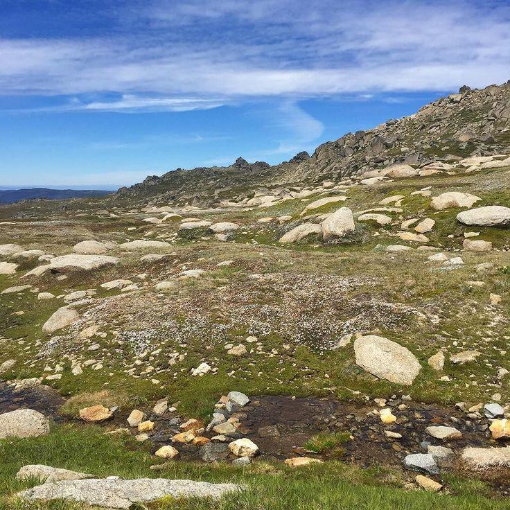 Beautiful Mount Kosciuszko!  #mtkosciuszko #kosciuszkonationalpark #hiking #hikingadventures #stunning #beautiful #scenery #australia #moderationmovement #figureate #dietitiansofinstagram by moderationmovement