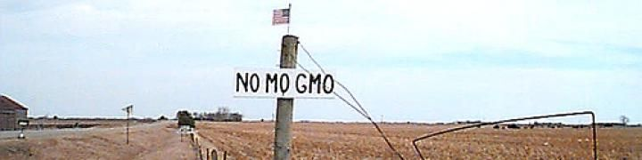 In 1997! Fox News Reporters Fired For Truthful Reporting on Genetic Engineering in Milk and Monsanto « Genetically Modified Foods, The Silent Killer