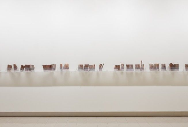 'Lines of demarcation'- 2013, by Liz Butler who won 1st prize in #BrokenHill 's Outback Open Art Prize 2014 with her 5 metre long work of 'eucalyptus bark pieces which were placed on translucent acrylic shelving'.
