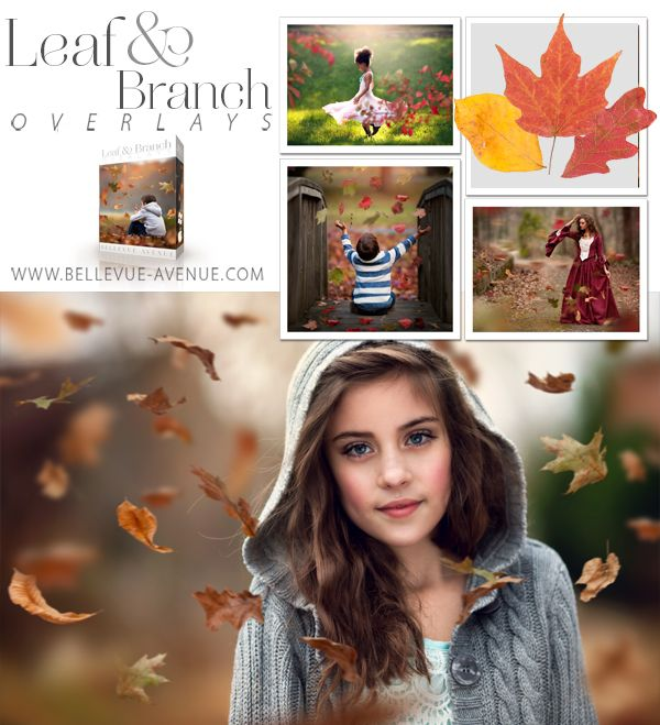 Bellevue Avenue | Leaf & Branch Overlays  Set of 96 Leaf and Branch overlays + 3 Helper Actions to enhance your Fall photos #photography #photoshop #edit