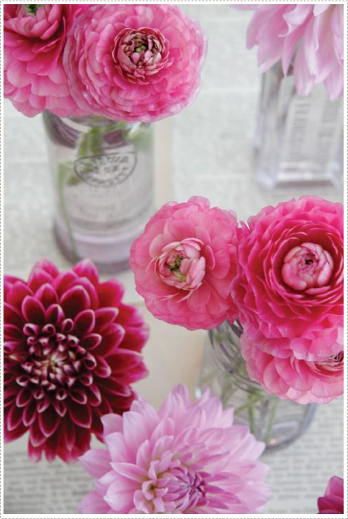 Pink Dahlias:): Pink Pink Pink, Pink Flowers, Pink Table, Colors Rose, Dahlias Flowers, Flowers Arrangements, Beautiful Flowers, Glasses Jars, Pink Dahlias