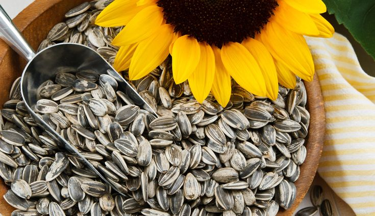 Boost your health with these wonder seeds that pack numerous vitamins and minerals into tiny packages.
