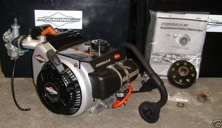 Briggs & Stratton World Formula Go Kart Racing Engine Mini Bike Drift Trike | Sporting Goods, Outdoor Sports, Go-Karts (Recreational) | eBay!