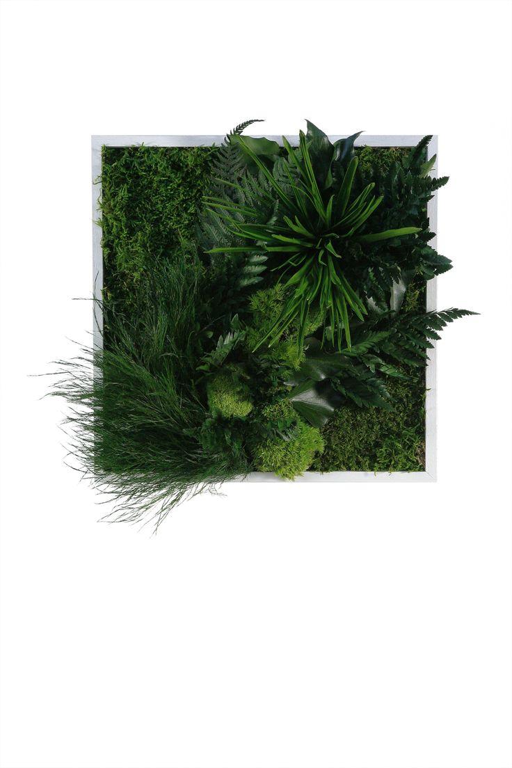 22 best stylegreen inspiration images on pinterest vertical gardens moss art and moss wall art. Black Bedroom Furniture Sets. Home Design Ideas