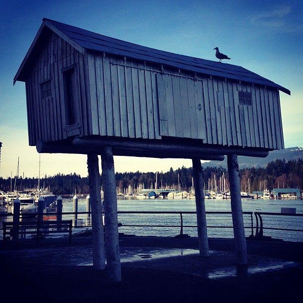 Coal Harbour Living! Photo by eddiechan