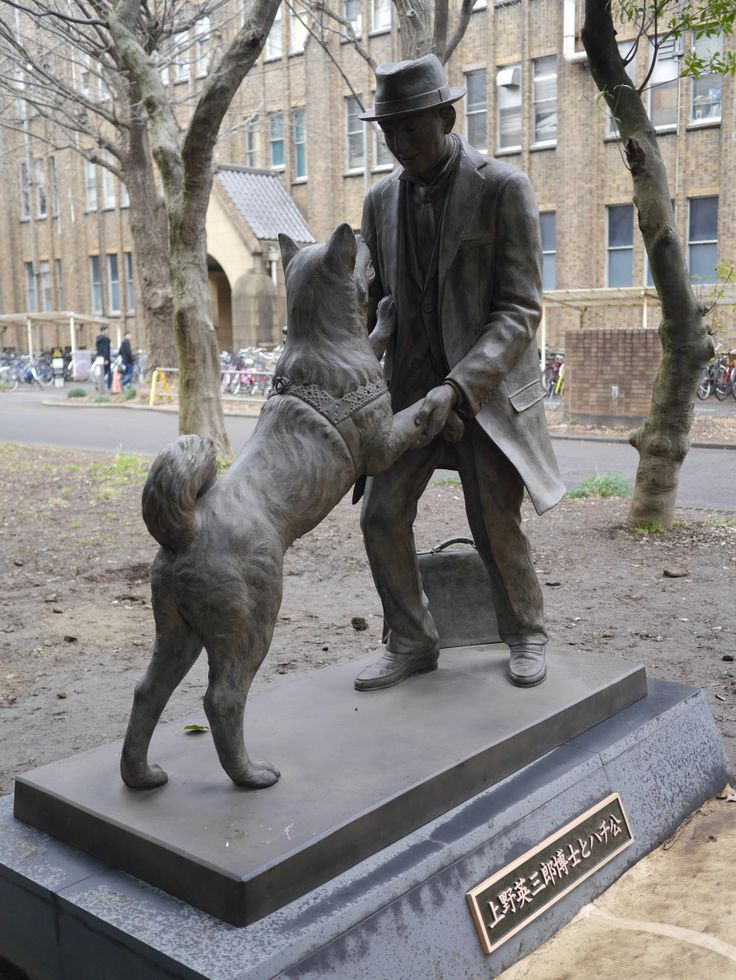 New Hachiko statue at the University of Tokyo honors Hachiko's owner, professor of agricultural engineering Hidesaburo Ueno.