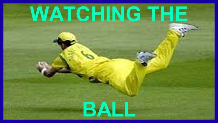 How to Take Slip Catches in Cricket - Fielding Practice Tips