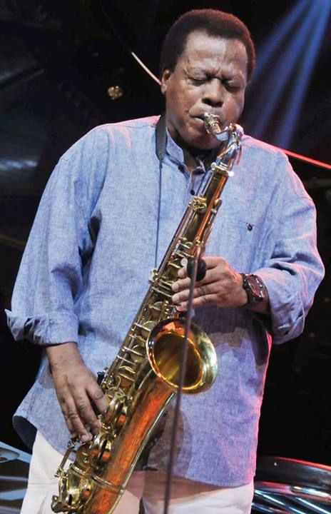 the extremely talented  Wayne Shorter ~ photo in Marciac 2013 © Pierre Vignaux
