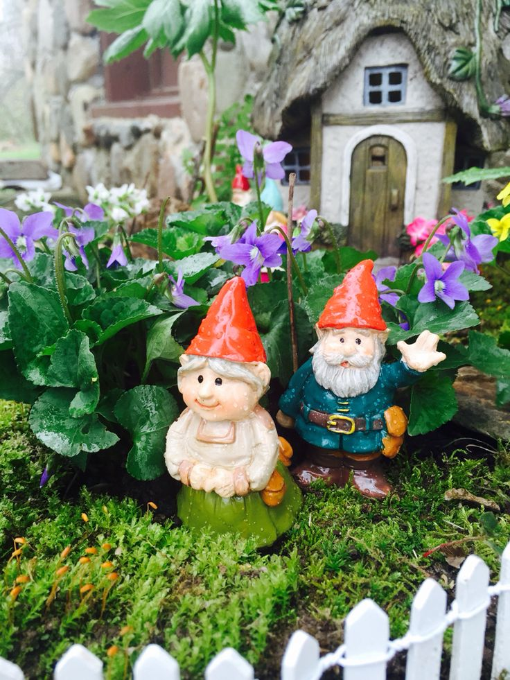 Gnome In Garden: 17 Best Images About NoMee's Gnomes On Pinterest