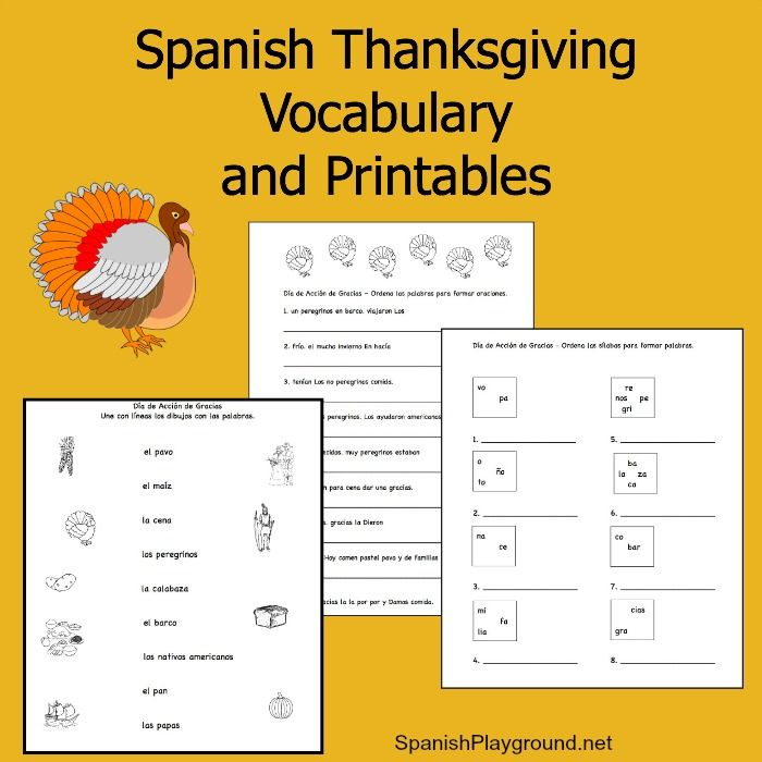 Spanish Thanksgiving vocabulary list and printable activities. Match words to pictures, order syllables and order words in a sentence.
