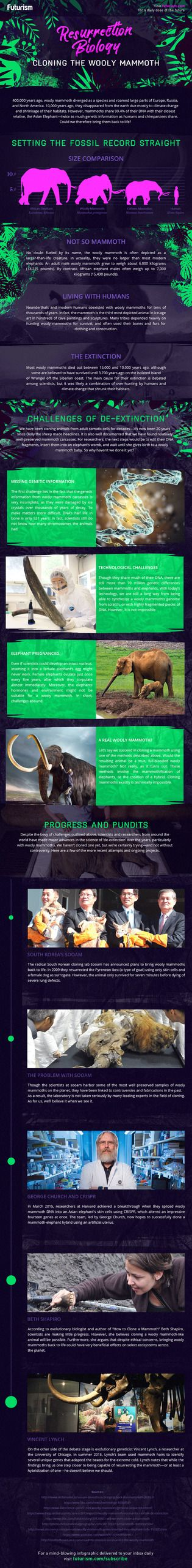 Resurrection Biology: Cloning the Wooly Mammoth (INFOGRAPHIC):  Resurrecting an ancient elephant is a mammoth undertaking. Will scientists ever be able to do it?http://futurism.com/images/resurrection-biology-cloning-wooly-mammoth/?utm_campaign=coschedule&utm_source=pinterest&utm_medium=Futurism&utm_content=Resurrection%20Biology%3A%20Cloning%20the%20Wooly%20Mammoth