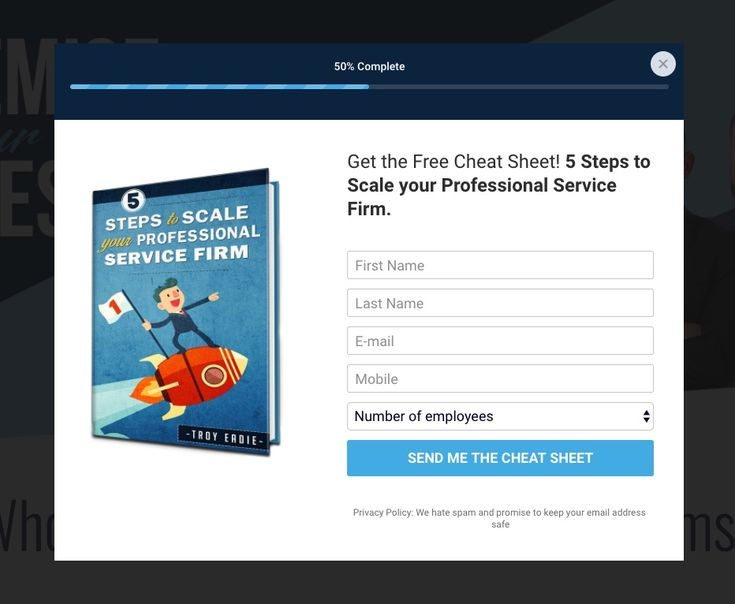 Optin for Business Success Systems - 5 Steps to Scale your Professional Service Firm