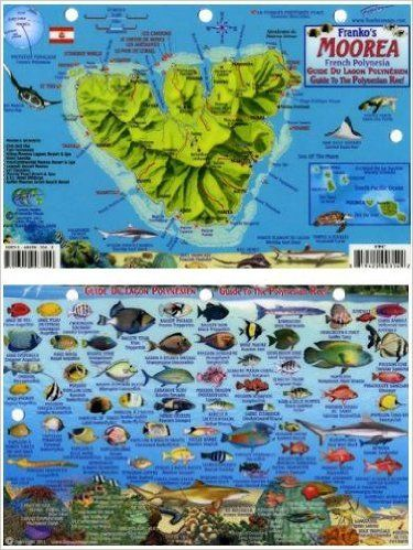 Moorea French Polynesia Map & Reef Creatures Guide Franko Maps Laminated Fish Card: Franko Maps Ltd.: 9781601903549: AmazonSmile: Books $6